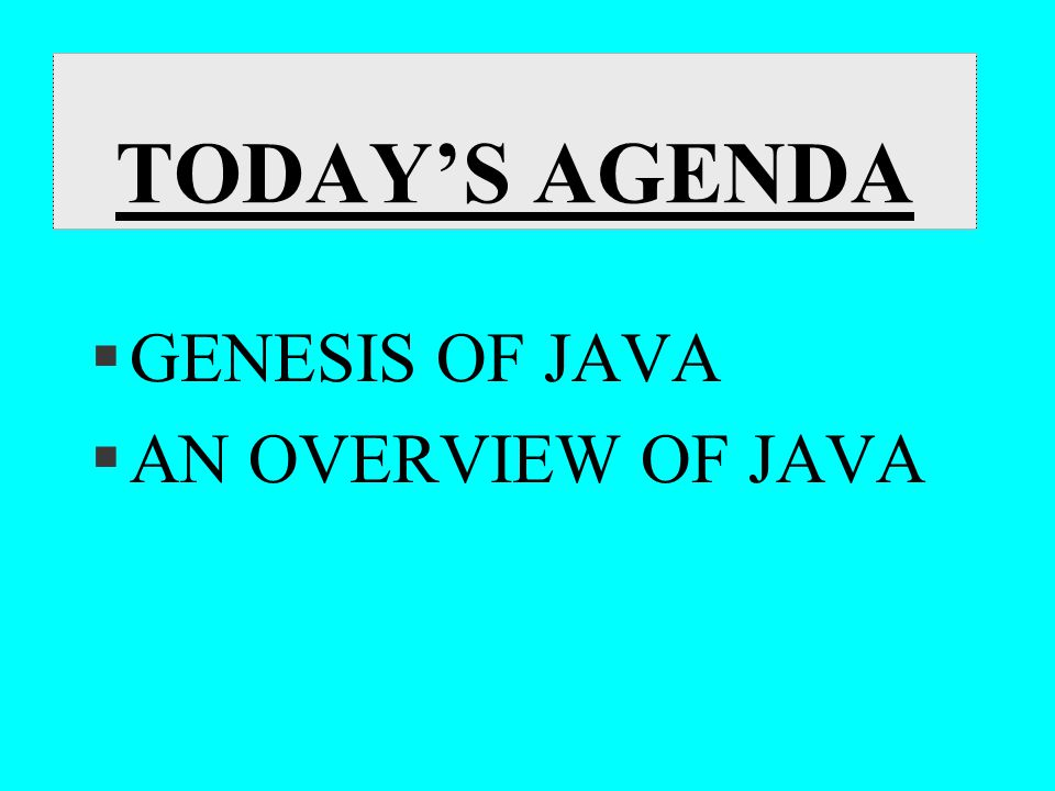 TODAY'S AGENDA §GENESIS OF JAVA §AN OVERVIEW OF JAVA