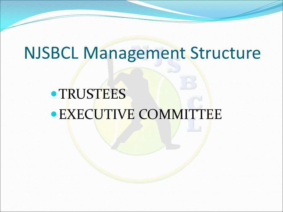  Event Management  Plan and manage the events of NJSBCL (AGM, Finals, 8x8, Awards Nite)  Finance Committee  Manage funds, develop & present balance sheet, income statements of NJSBCL  Approve expenses of league  Yearly tax filing of league & Prepare league for audits  Not for profit registration renewals EC Working Areas