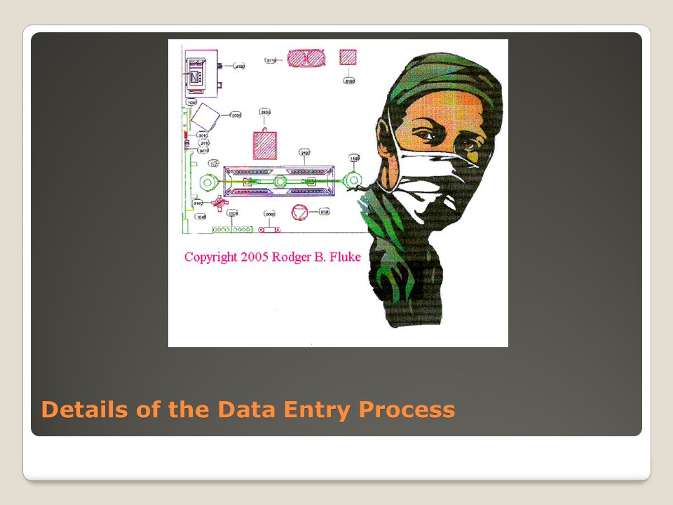 Details of the Data Entry Process