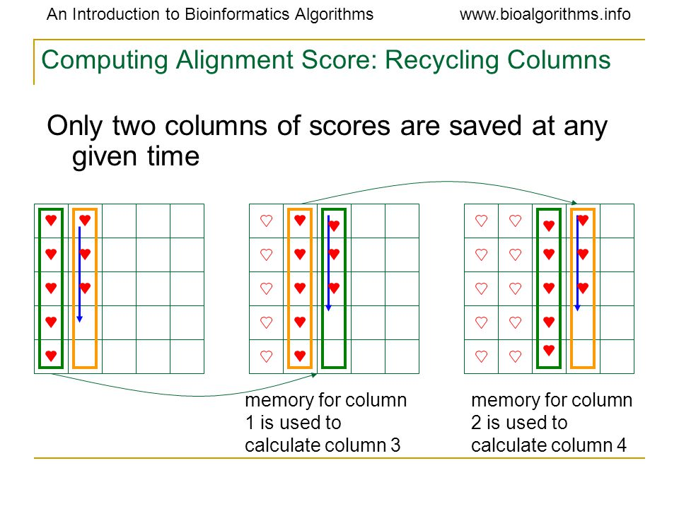 An Introduction to Bioinformatics Algorithmswww.bioalgorithms.info Computing Alignment Score: Recycling Columns memory for column 1 is used to calculate column 3 memory for column 2 is used to calculate column 4 Only two columns of scores are saved at any given time