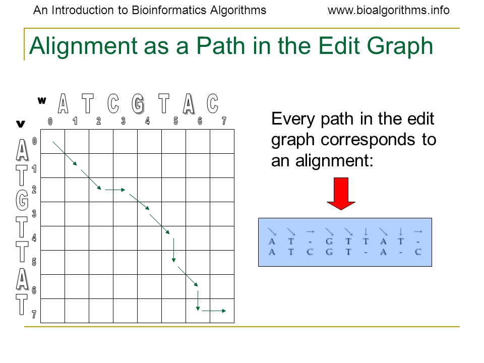An Introduction to Bioinformatics Algorithmswww.bioalgorithms.info Alignment as a Path in the Edit Graph Every path in the edit graph corresponds to a