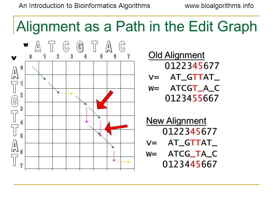 An Introduction to Bioinformatics Algorithmswww.bioalgorithms.info Alignment as a Path in the Edit Graph Old Alignment 0122345677 0122345677 v= AT_GTT