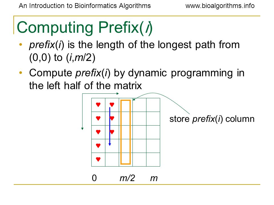 An Introduction to Bioinformatics Algorithmswww.bioalgorithms.info Computing Prefix(i) prefix(i) is the length of the longest path from (0,0) to (i,m/2) Compute prefix(i) by dynamic programming in the left half of the matrix 0 m/2 m store prefix(i) column