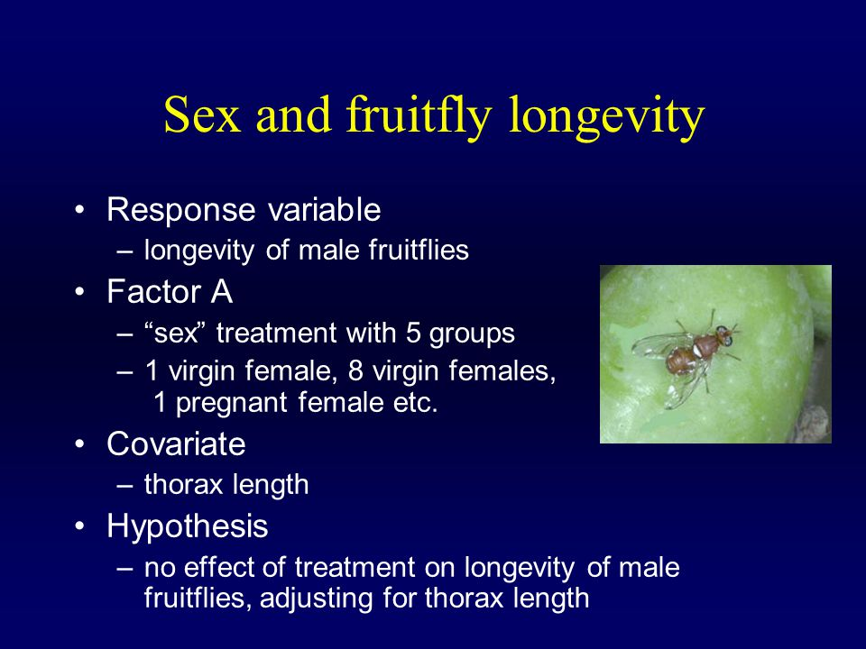 Sex and fruitfly longevity Response variable –longevity of male fruitflies Factor A – sex treatment with 5 groups –1 virgin female, 8 virgin females, 1 pregnant female etc.