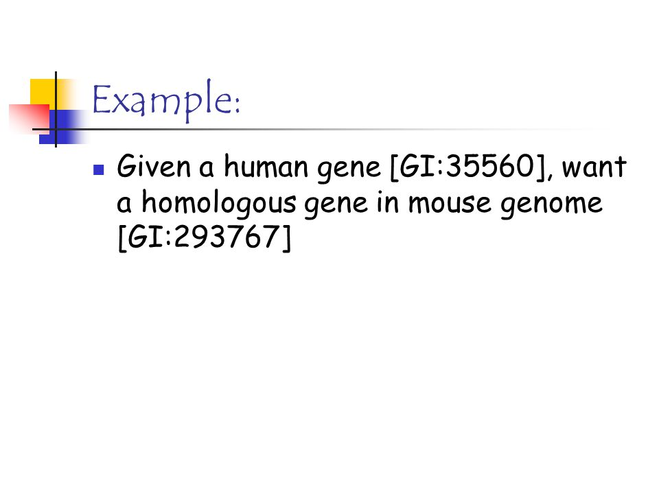 Example: Given a human gene [GI:35560], want a homologous gene in mouse genome [GI:293767]