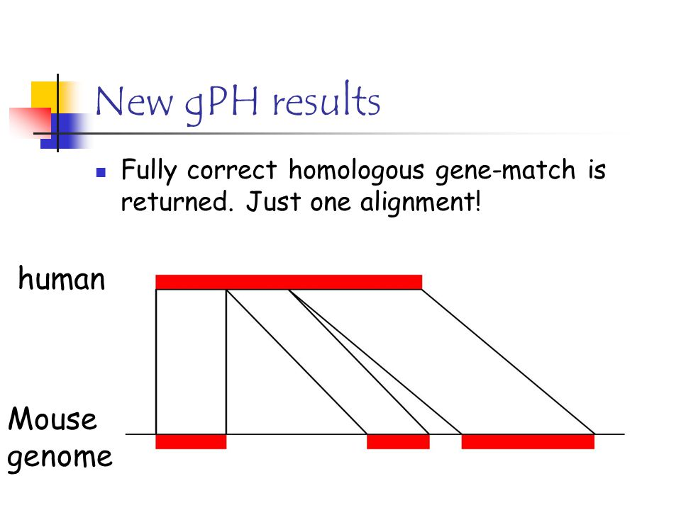 New gPH results Fully correct homologous gene-match is returned.