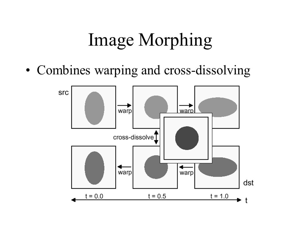 Image Morphing Combines warping and cross-dissolving
