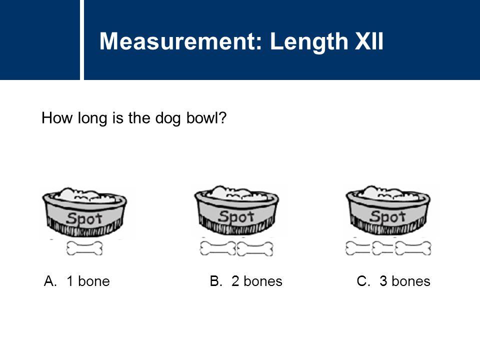 Question Title How long is the dog bowl? Question Title Measurement: Length XII A. 1 bone B. 2 bones C. 3 bones