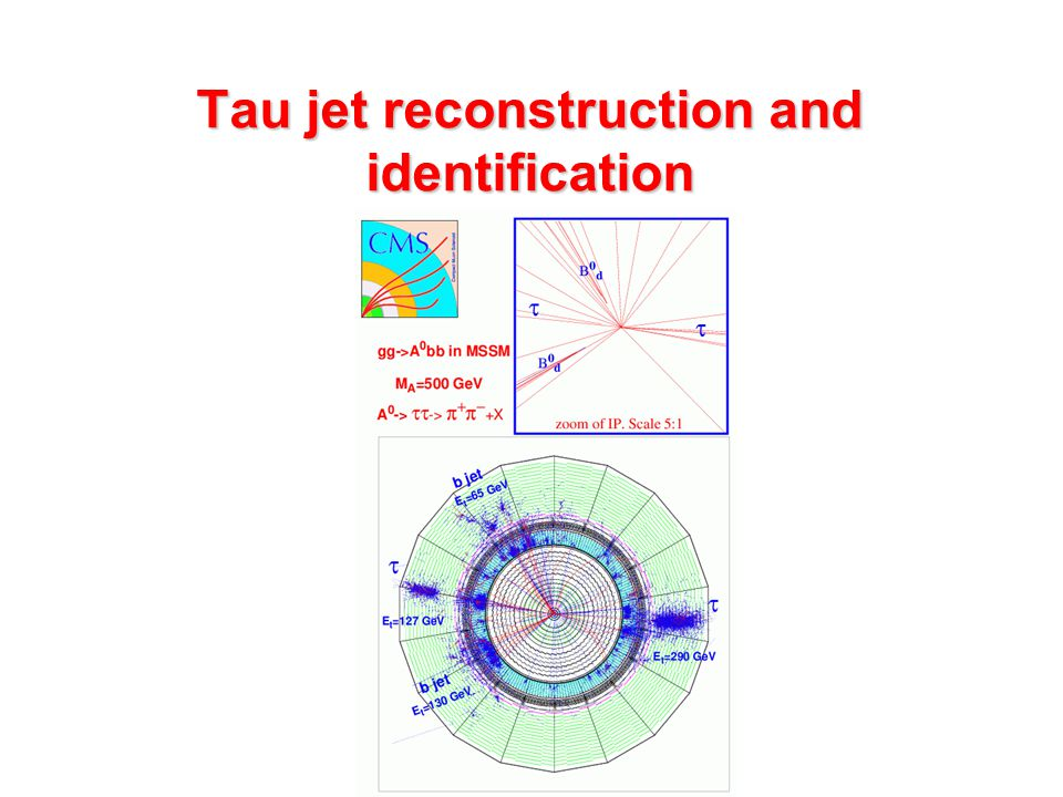 Tau jet reconstruction and identification
