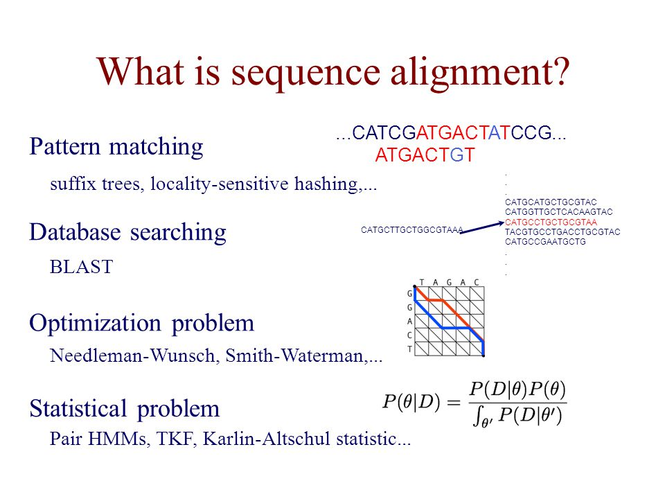 What is sequence alignment.Optimization problem Pattern matching...CATCGATGACTATCCG...