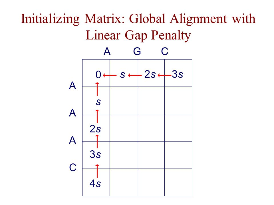 Initializing Matrix: Global Alignment with Linear Gap Penalty A s A 2s2s CAG A 3s3s C 4s4s 0 3s3ss2s2s