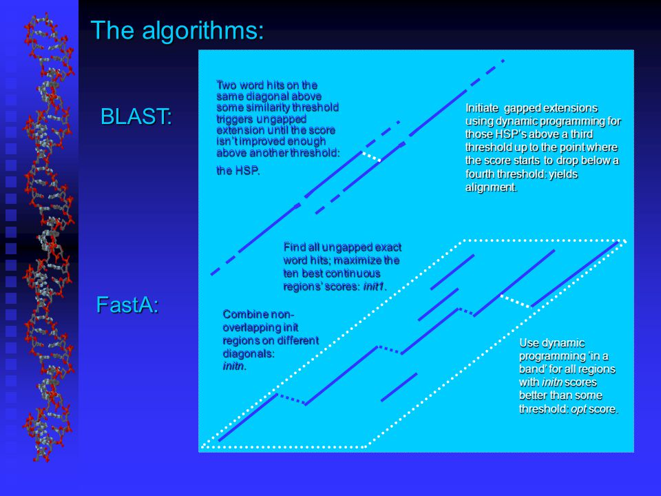 The algorithms: BLAST: FastA: Two word hits on the same diagonal above some similarity threshold triggers ungapped extension until the score isn't improved enough above another threshold: the HSP.