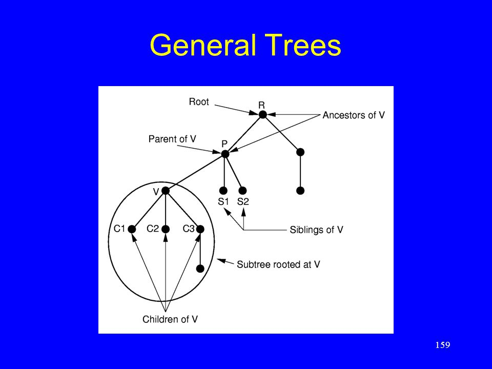 159 General Trees