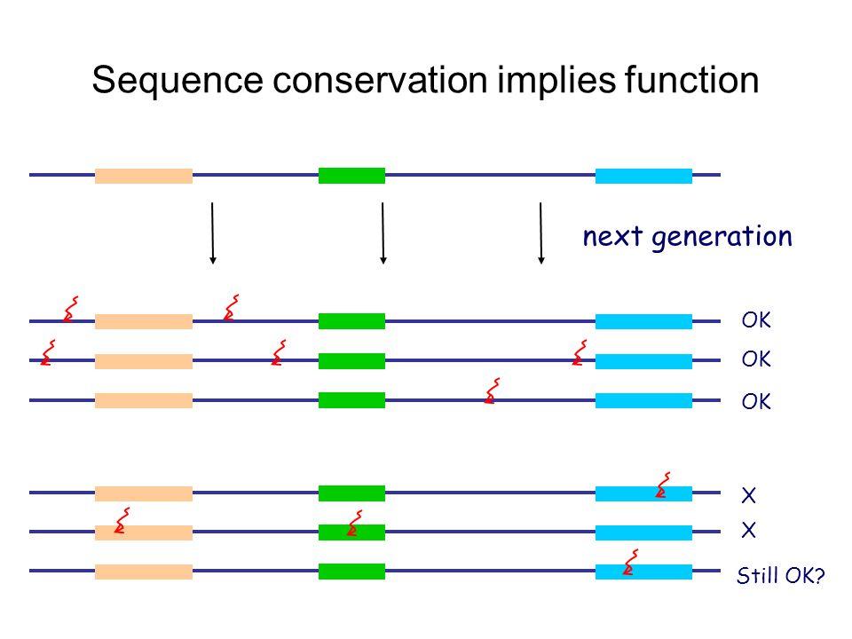 Sequence conservation implies function OK X X Still OK? next generation