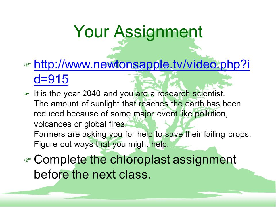 Your Assignment F http://www.newtonsapple.tv/video.php i d=915 http://www.newtonsapple.tv/video.php i d=915 F It is the year 2040 and you are a research scientist.