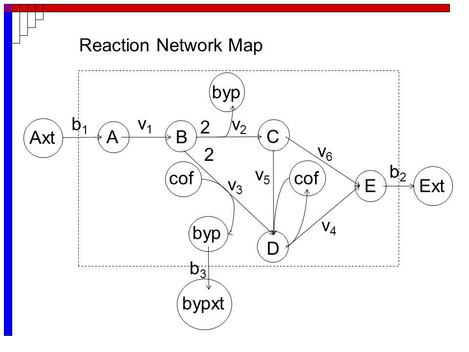 E Axt Ext bypxt AB C byp v1v1 v2v2 2 b1b1 D cof byp 2 cof b3b3 b2b2 v3v3 v5v5 v4v4 v6v6 Reaction Network Map
