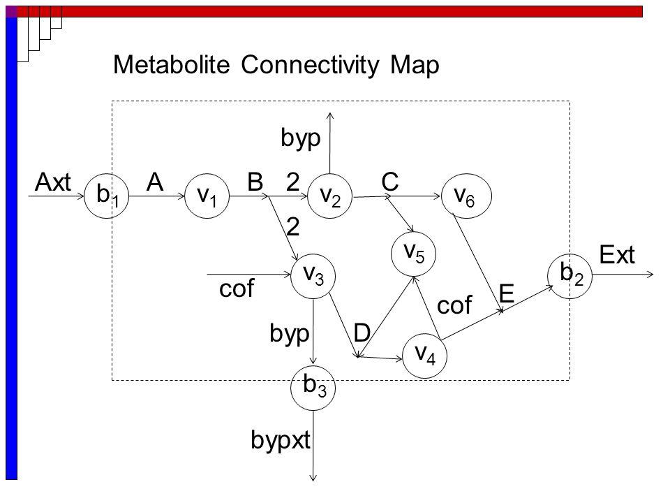E Axt Ext bypxt ABC byp 2 D cof byp 2 cof Metabolite Connectivity Map b1b1 v1v1 v2v2 v3v3 v4v4 v6v6 v5v5 b3b3 b2b2
