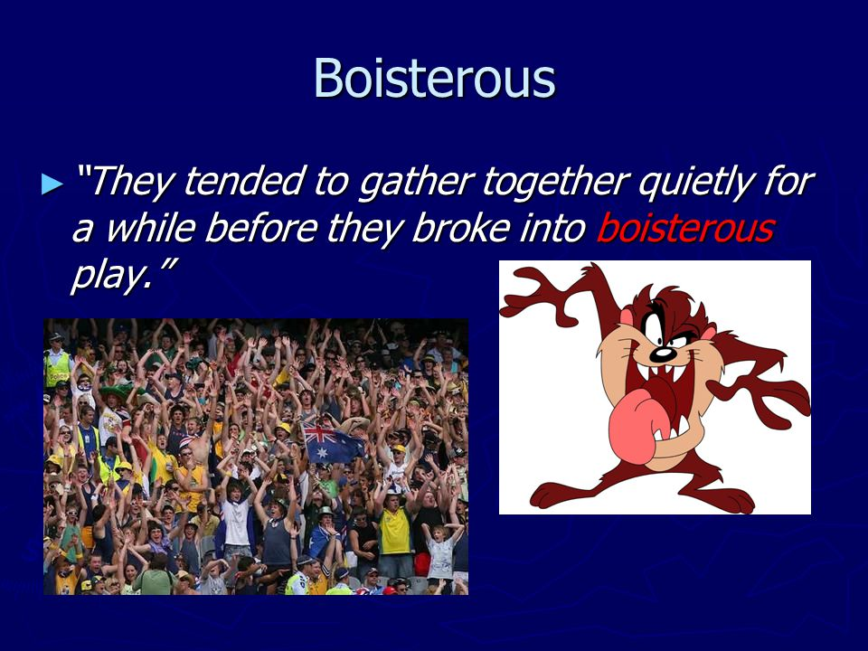 Boisterous ► They tended to gather together quietly for a while before they broke into boisterous play.