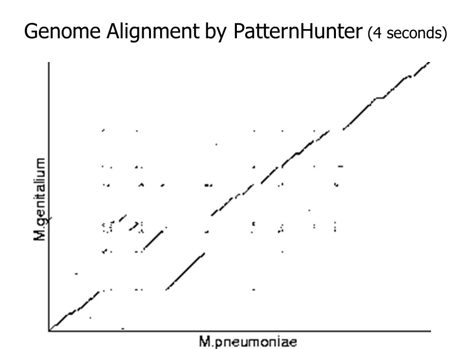 Genome Alignment by PatternHunter (4 seconds)