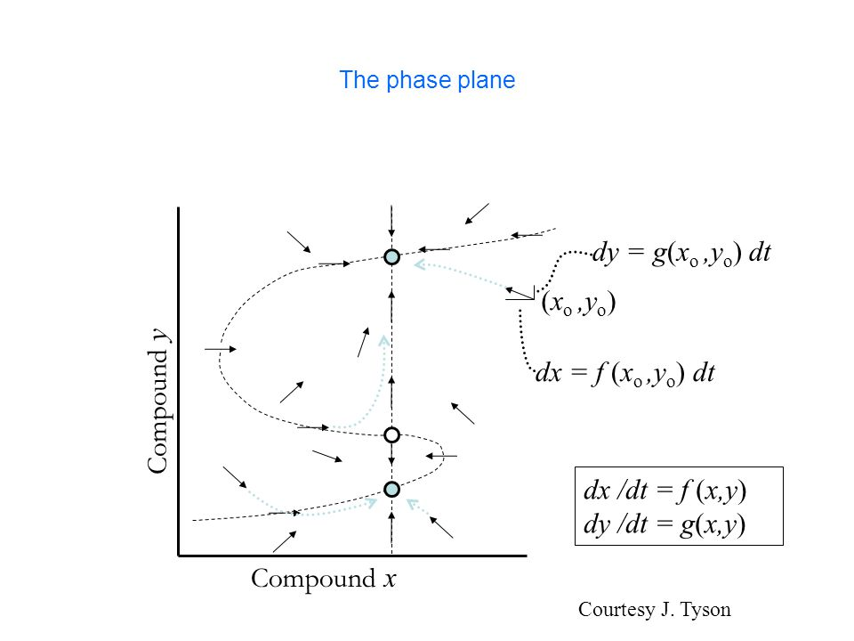 The Dynamotope (joint work with A.Jarrah, B. Sturmfels, P.