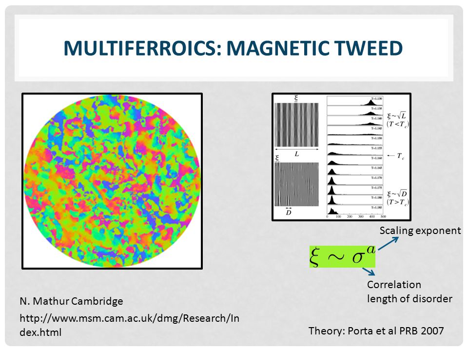 MULTIFERROICS: MAGNETIC TWEED http://www.msm.cam.ac.uk/dmg/Research/In dex.html N.