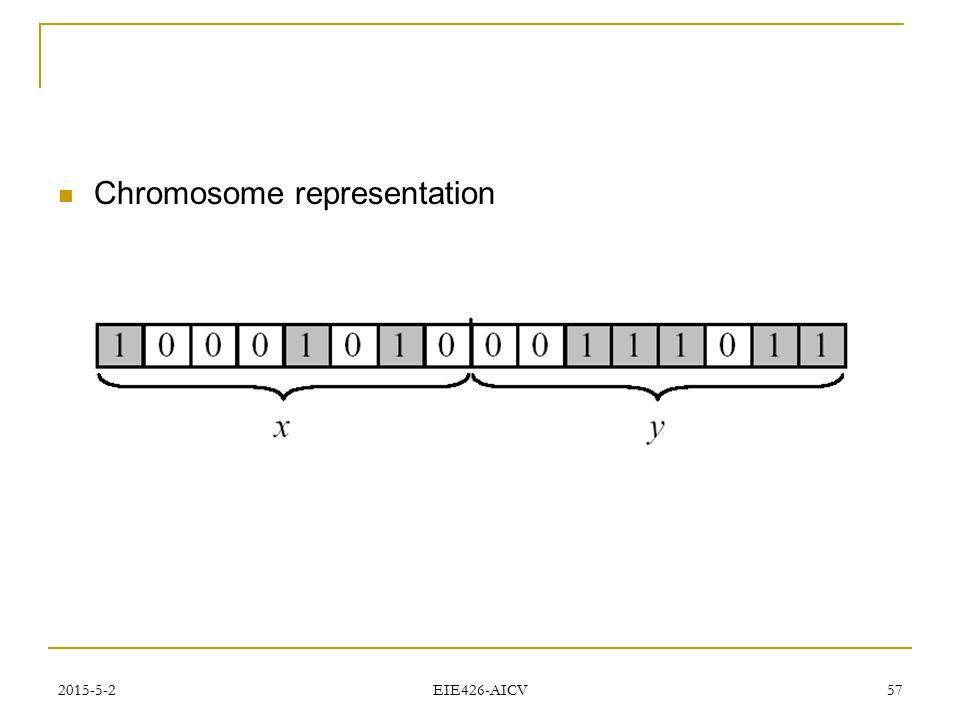2015-5-2 EIE426-AICV 57 Chromosome representation