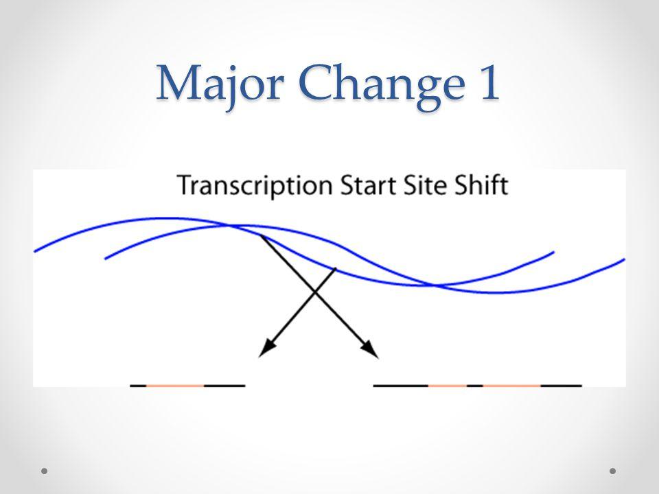 Major Change 1