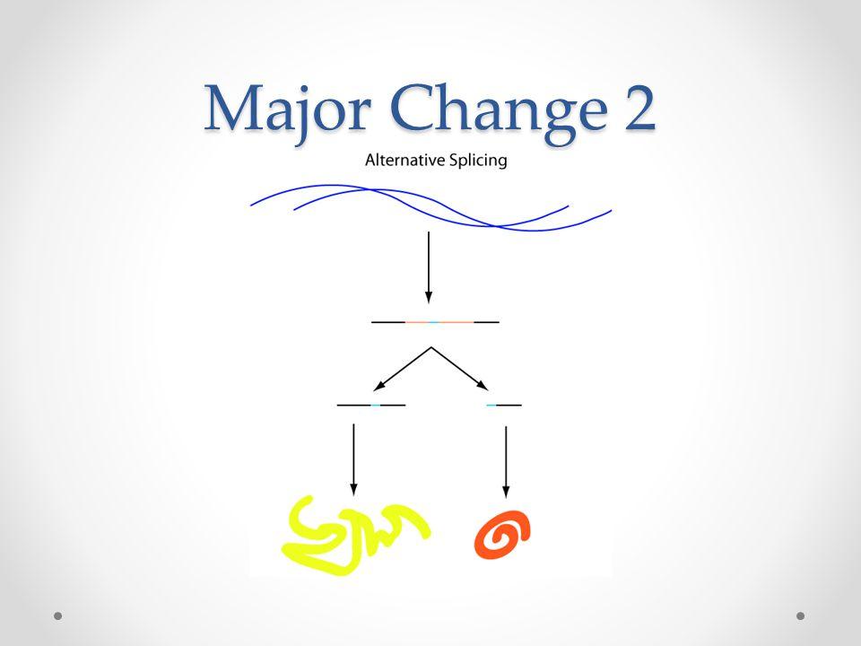 Major Change 2