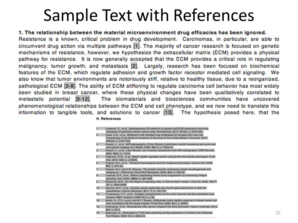 Sample Text with References 10