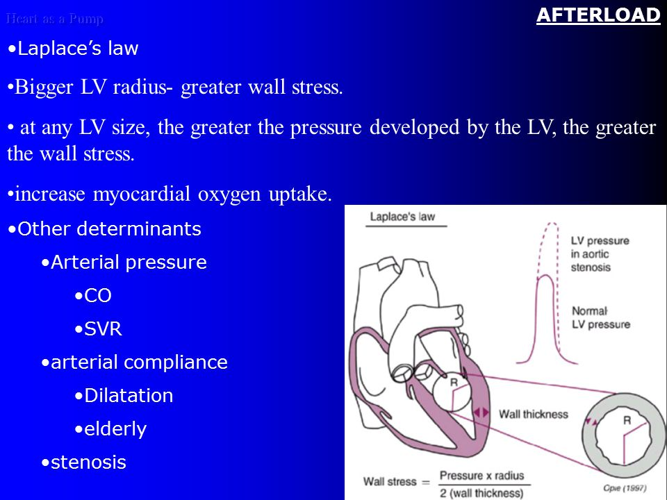 Heart as a Pump AFTERLOAD Laplace's law Bigger LV radius- greater wall stress.