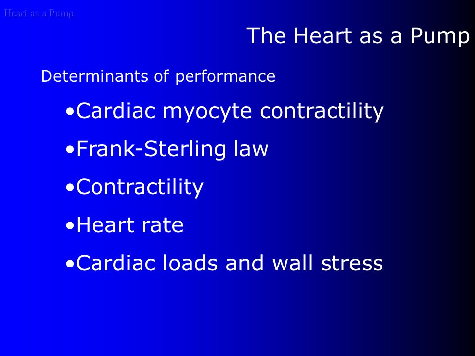 Heart as a Pump Long acting membrane Ca++ channels Typically they can be divided into four classes: L, T, N, and P types L-type channels are activated by high voltage and are modulated by 1,4-dihydropyridines.