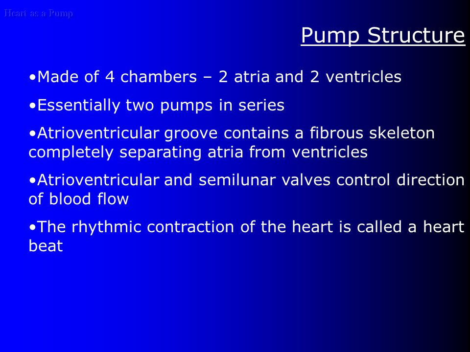 Heart as a Pump Pump Structure Made of 4 chambers – 2 atria and 2 ventricles Essentially two pumps in series Atrioventricular groove contains a fibrous skeleton completely separating atria from ventricles Atrioventricular and semilunar valves control direction of blood flow The rhythmic contraction of the heart is called a heart beat