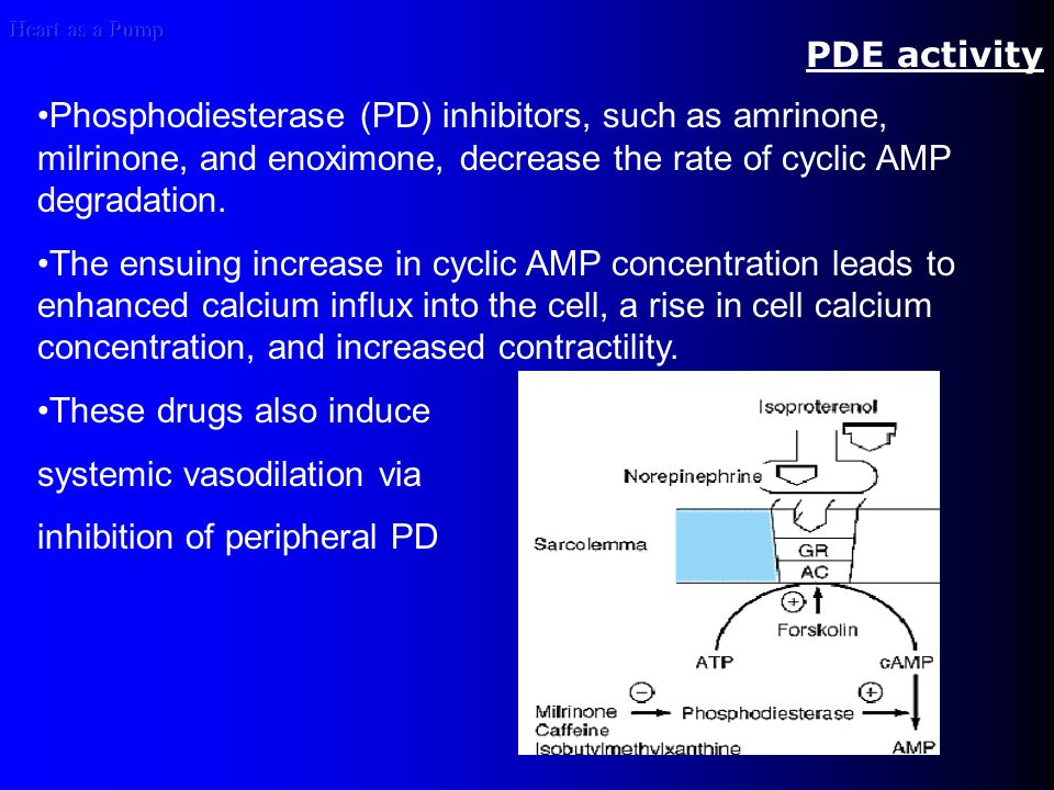 Heart as a Pump PDE activity Phosphodiesterase (PD) inhibitors, such as amrinone, milrinone, and enoximone, decrease the rate of cyclic AMP degradation.