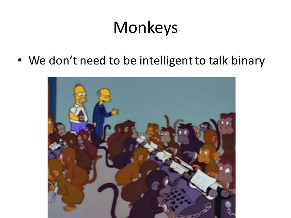Monkeys We don't need to be intelligent to talk binary