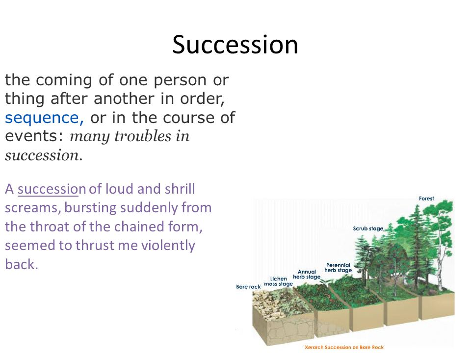 Succession the coming of one person or thing after another in order, sequence, or in the course of events: many troubles in succession. A succession o
