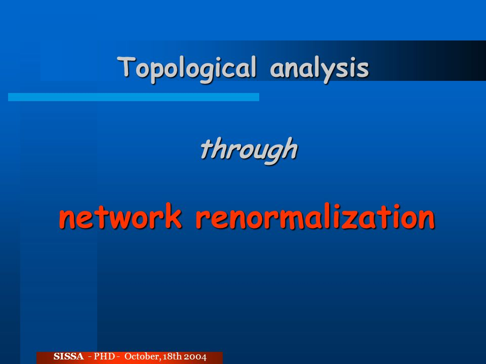 Topological analysis SISSA - PHD - October, 18th 2004 through network renormalization