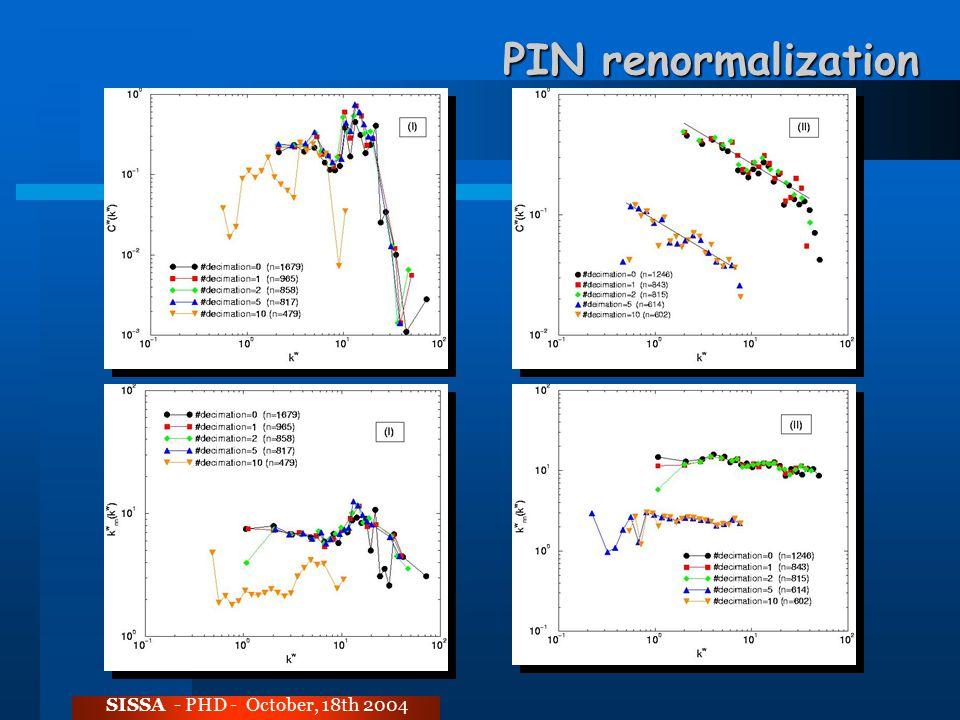 PIN renormalization SISSA - PHD - October, 18th 2004