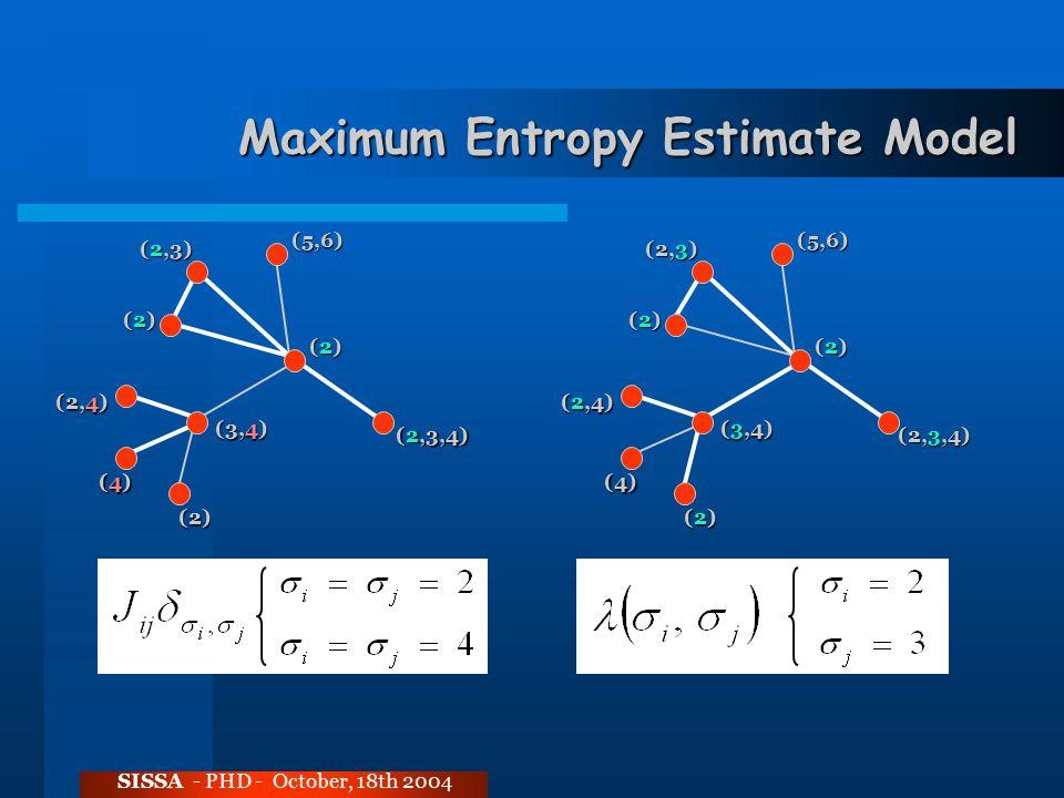 Maximum Entropy Estimate Model SISSA - PHD - October, 18th 2004 (2)(2)(2)(2) (2,3,4) (2)(2)(2)(2) (2,3) (5,6) (3,4) (4)(4)(4)(4) (2) (2,4) (2)(2)(2)(2) (2,3,4) (2)(2)(2)(2) (2,3) (5,6) (3,4) (4) (2)(2)(2)(2) (2,4)