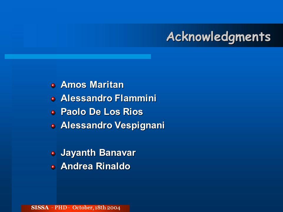 Acknowledgments Amos Maritan Alessandro Flammini Paolo De Los Rios Alessandro Vespignani Jayanth Banavar Andrea Rinaldo SISSA - PHD - October, 18th 2004