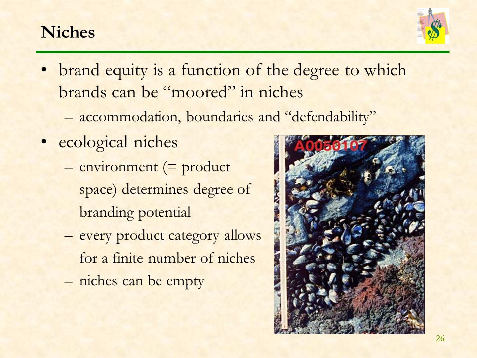 26 Niches brand equity is a function of the degree to which brands can be moored in niches –accommodation, boundaries and defendability ecological niches –environment (= product space) determines degree of branding potential –every product category allows for a finite number of niches –niches can be empty