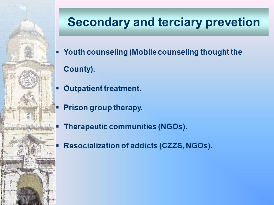  Youth counseling (Mobile counseling thought the County).