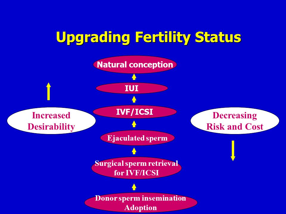 Natural conception IUI Decreasing Risk and Cost Upgrading Fertility Status IVF/ICSI Ejaculated sperm Increased Desirability Surgical sperm retrieval f