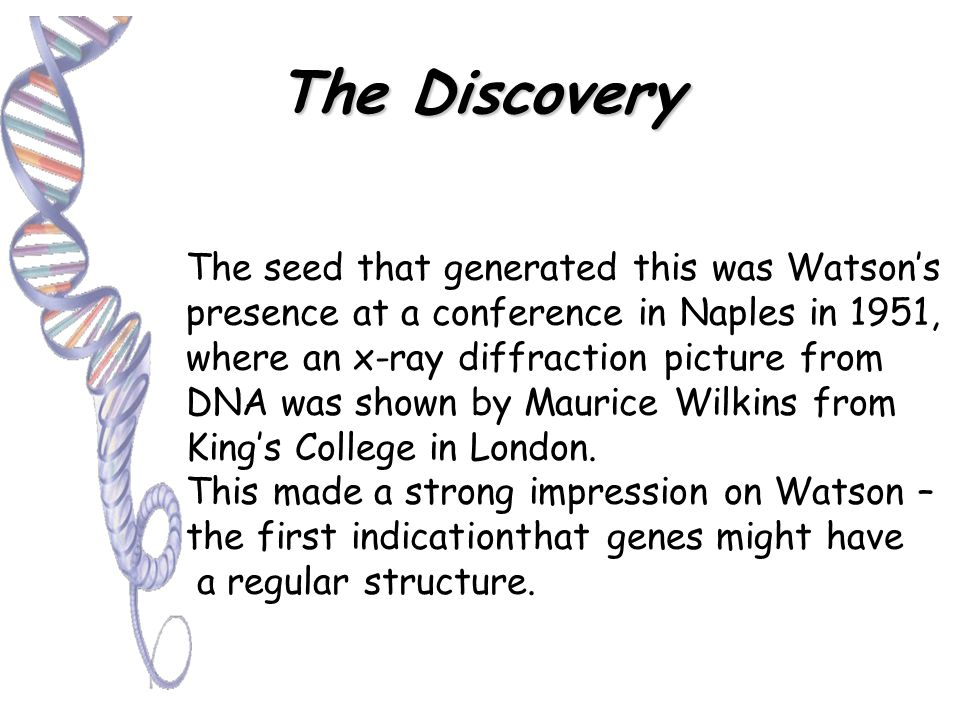 The Discovery The DNA molecule was discovered in 1951 by Francis Crick, James Watson and Maurice Wilkins using X-ray Diffraction. In Spring 1953, Fran