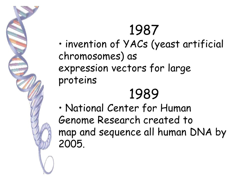 1984 Alec Jeffreys introduces technique for DNA fingerprinting to identify individuals 1985 Genetically engineered plants resistant to insects, viruses, and bacteria are field tested for the first time The NIH approves guidelines for performing experiments in gene therapy on humans
