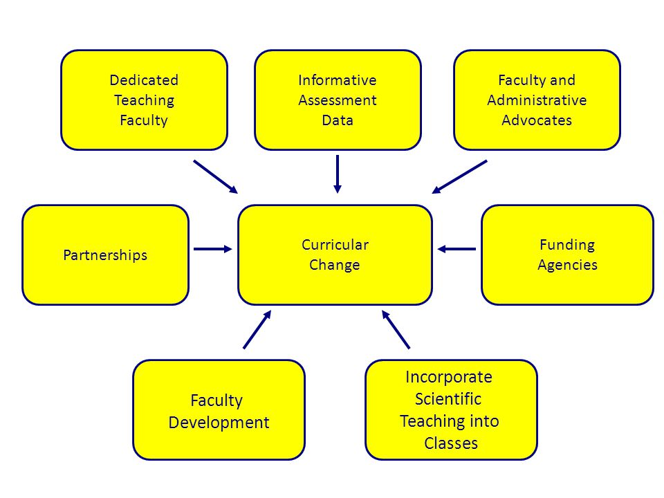 Curricular Change Incorporate Scientific Teaching into Classes Faculty Development Partnerships Funding Agencies Dedicated Teaching Faculty Informative Assessment Data Faculty and Administrative Advocates