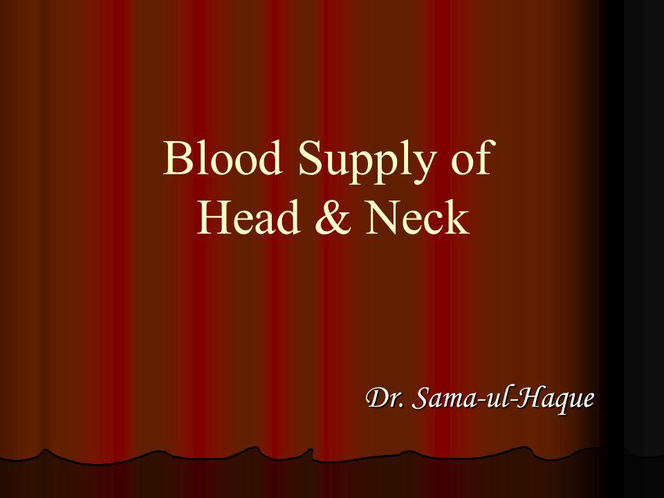 Blood Supply of Head & Neck Dr. Sama-ul-Haque Dr. Sama-ul-Haque