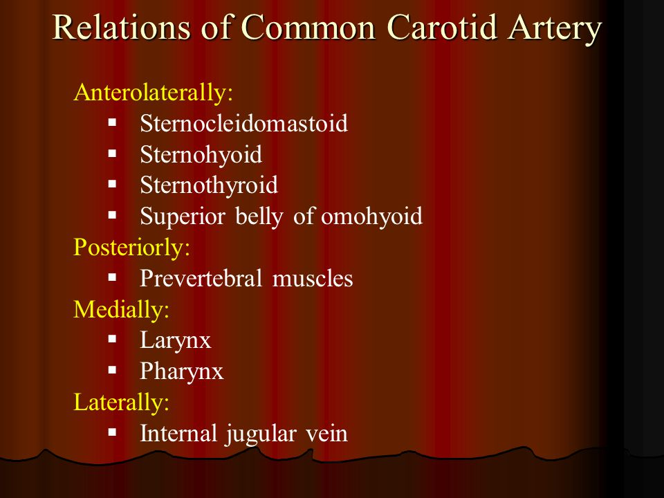 Relations of Common Carotid Artery Anterolaterally:  Sternocleidomastoid  Sternohyoid  Sternothyroid  Superior belly of omohyoid Posteriorly:  Pr