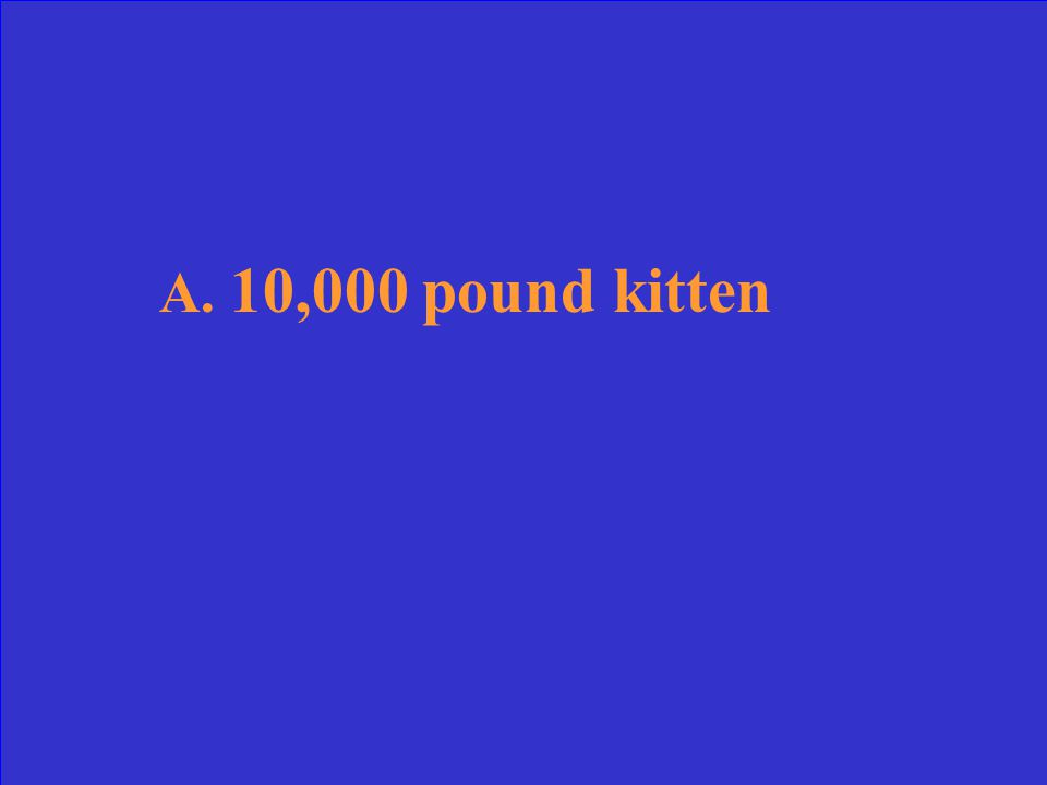 A.10,000 pound kitten B.a floating kite C.1 brown egg in a dozen D.a talking parrot Use deductive reasoning to determine which is NOT possible.