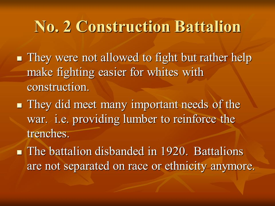 No. 2 Construction Battalion They were not allowed to fight but rather help make fighting easier for whites with construction. They were not allowed t