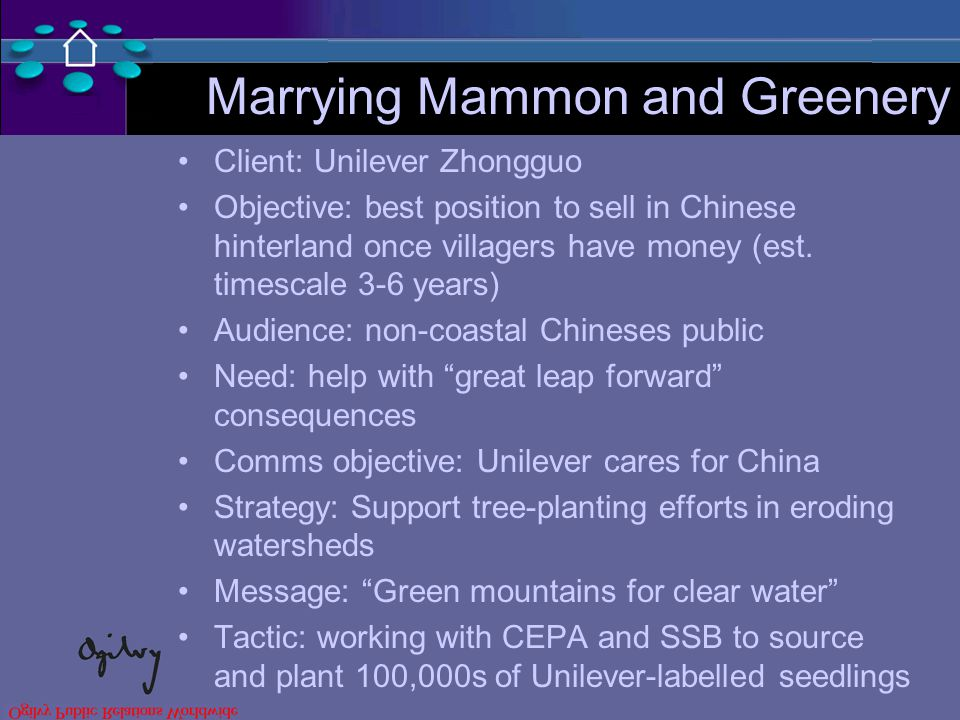 Marrying Mammon and Greenery Client: Unilever Zhongguo Objective: best position to sell in Chinese hinterland once villagers have money (est.